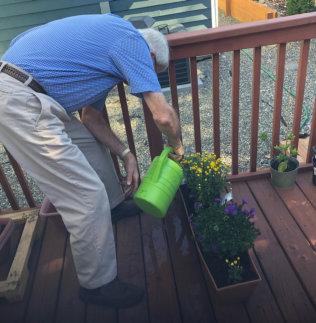 senior watering the plants